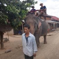 ルアンパバーン到着からの象に乗って洞窟観光